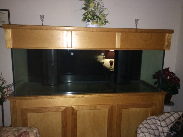 A very empty 180 gallon Aquarium Tank.