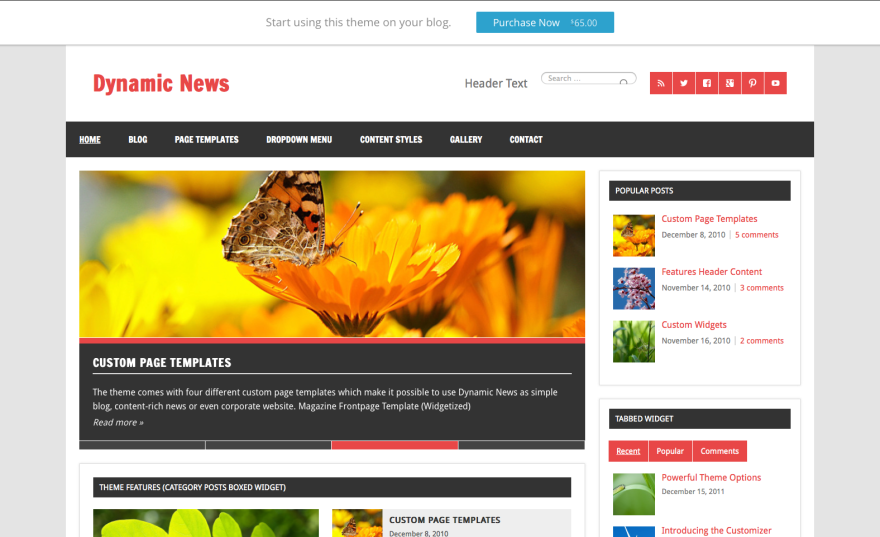 Dynamic News Theme.